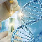 Hormonothérapie traitement du cancer du sein